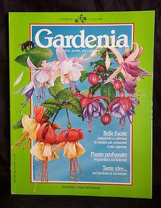 GARDENIA FIORI, PIANTE, ORTI E GIARDINI NR.87 ANNO 1991