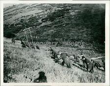 1914 World War I French Climb to Attack Original News Service Photo