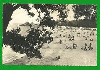 TERCER-85 - Noirmoutier - La playa de damas submarino los árboles