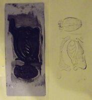 Antico Timbro da Scuola Anatomia Vista Laterale Ganascia Corpo Lingua 8 x 19cm