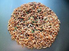 cichlid pellet mix ,catfish,plecs,corys,fish food,Bottom Feeders, Breeding 100g