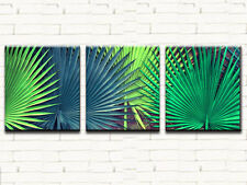 PALM LEAVES LARGE CANVAS PRINTS SET OF 3 50x60 (ON FRAME) WALL ART