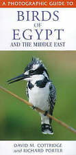 A Photographic Guide to Birds of Egypt and the Middle East... by Porter, Richard