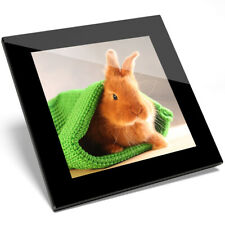 1 x Baby Bunny Rabbit Pet Animal Glass Coaster - Kitchen Student Gift #14578