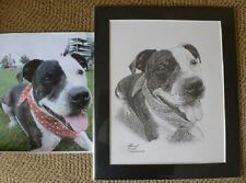 Artist Animals Original Art Drawings