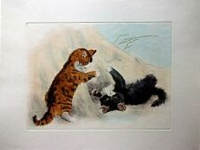Kittens Playing - Hand Colored (Restrike Etching) by H. Dixon -  Kittens at Play