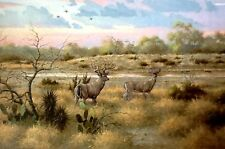 SUNDOWN AT LITTLE TANK David Drinkard Giclee on Canvas South Texas Deer Hunt Art