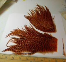 New listing Whiting Bugger Pack feathers - Usa seller - Burnt Orange Grizzly