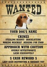 BEAGLE Wanted Personalized Magnet With Your Dog's Name