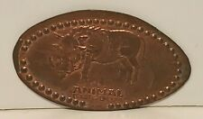 DISNEY WORLD ANIMAL KINGDOM THEME PARK WARTHOG PIG PRESSED PENNY ELONGATED COIN