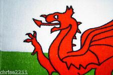 Il Galles / Welsh Dragon VISO