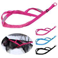 Verstellbarer Schlitten-Hundegeschirr Stark ziehender Hundegeschirr Ausbildung