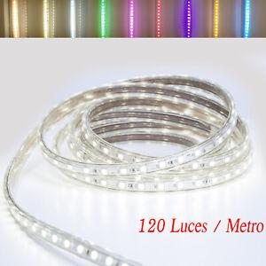 TIRA DE LED MANGUERA LUZ 220V INTERIOR IP65 ALTA ILUMINACION (120 Luces/Metro)