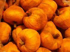 20 Burnt Orange Pumpkins 3 inch Floral Arranging Wreaths Potpourri