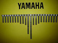 Yamaha XV250 250cc Virago V Vee Doble Acero Inoxidable SS Cubierta Del Motor Kit De Perno