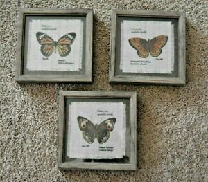 Set Of 3 Botanical Butterfly Framed Tapestry 7 x 7 Square Wall Art Pictures EUC