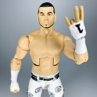 WWE Elite Collection MATT HARDY Figure SummerSlam 2018 Mattel Jeff Boyz AEW TNA
