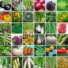 Heirloom Vegetable Garden Seeds Non Gmo/Hybrid Organic Survival Plant Bank Lot