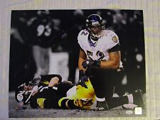 Ray Lewis Sacking Ben  Autograph 16 X 20 Photo PURPLE Ink JSA Authentic