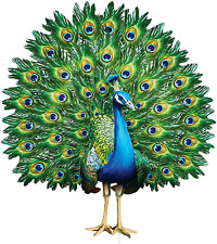 Metal Peacock Yard Stake Decorative Colorful Bird For Garden Lawn Patio Outdoor