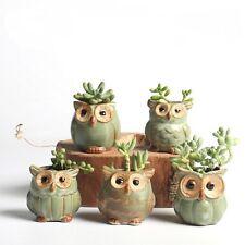 5pcs/lot Creative Ceramic Owl Shape Flower Succulent Plant, Pots for Fleshy