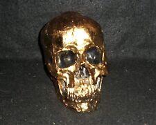 Gold Skull Head Collectible Skeleton Decoration Figurine