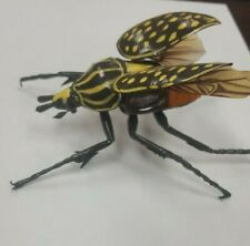 Beetle Insect Bug figure* wings open and close