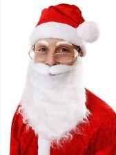 White Santa Claus Beard Christmas Character Xmas Fancy Dress Costume Accessory