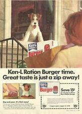 1977 vintage dog food Ad, Ken-L Ration Burger dog in window art, Schulz - 122213