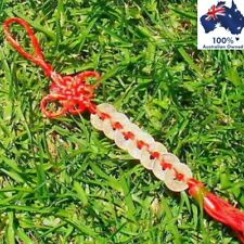 FENG SHUI Chinese Lucky Coins Red Tied Hanging Amulet WEALTH FORTUNE PROSPERITY