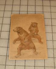 """Bears """"Swildens"""" Vintage Uk """"Art-Pencil"""" #K 390 Postcard - Unused !"""