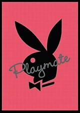 Playboy playmate : rosa - Maxi Poster 61 cm x 91.5cm new and sealed