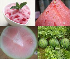 10pcs Rare Watermelon Seeds Sweet Fruit Vegetables Organic Plant Seed  HO010