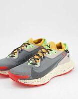 Nike Pegasus Trail 2 Gore Tex Mens Grey Running Sneaker Shoe Trainer All Sizes