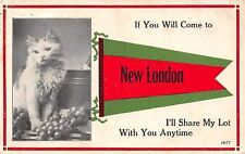 New London OH Kitty by Ice Bucket, Grapes & Wine Bottle~I'll Share With You 1913