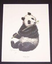 "Guy Coheleach Hand Signed Print ""Giant Panda"" Panda Bear"