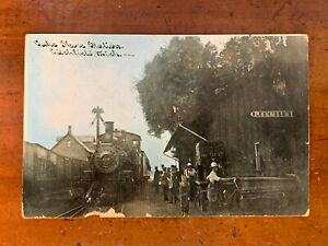 Michigan, MI, Litchfield, Railroad Station & Train, C.U. Williams, ca 1910