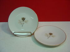 Rosenthal China SHADOW ROSE 2 Bread & Butter Plates