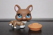 LPS Littlest Pet Shop CORGI BROWN TAN CREAM white DOG star blue EYE # 949 food