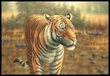"* 36""x24"" Oil Painting on Canvas, Tiger on the Prowl"