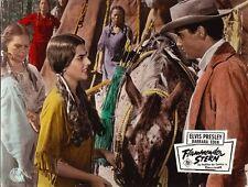 Elvis Presley, Flammender Stern, Aushangfoto, 1960