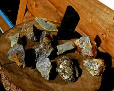12 Gold & Silver Ore HUNKS Broken from the Mother Lode 56oz  #1494 Shop Clean Up