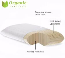 Natural Talalay Latex Pillow w/ Organic Cotton Cover - QUEEN