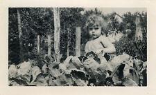 PHOTO ANCIENNE - VINTAGE SNAPSHOT - ENFANT JARDIN CHOUX GAG DRÔLE - CHILD GARDEN