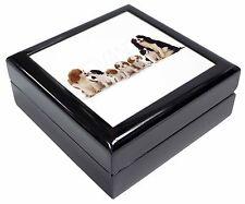 King Charles Spaniel Dogs Keepsake/Jewellery Box Christmas Gift, AD-SKC11JB