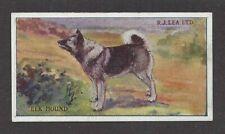 1923 Rare UK Dog Art RJ Lea Chairman Cigarette Card NORWEGIAN ELKHOUND