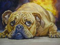 Watercolor Painting Dog Breed Bulldog Sad face Home Pet ACEO Art