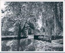Bridge Over Water Near Springtown Cumberland County New Jersey Press Photo