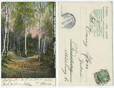 38662 - Weggabelung im Birkenwald - Künstlerkarte, gelaufen Nidda 21.3.1906