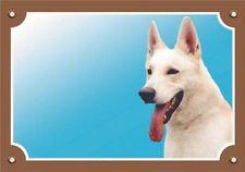 Nobby Dog Warning Signs